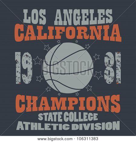 Basketball Champions t-shirt