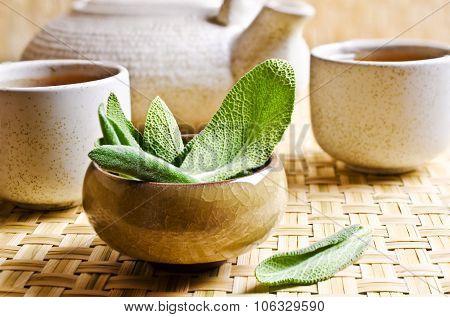 Leaves Of Fresh Sage