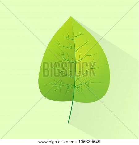 Green Leave Eco Flat Icon Logo Vector