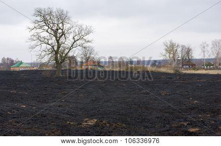 Spring landscape in Ukrainian countryside