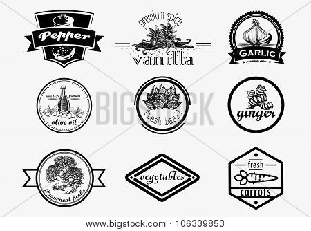 Spice logo set in vintage style. Vector hand drawn spice logotypes collection.
