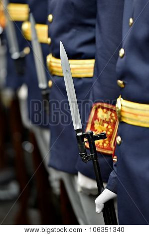 Guard Of Honor Bayonet Detail