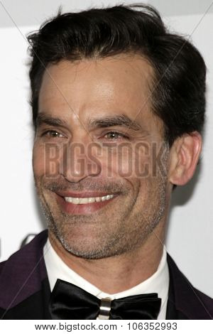 LOS ANGELES - JAN 11:  Jonathon Schaech at the NBC Post Golden Globes Party at a Beverly Hilton on January 11, 2015 in Beverly Hills, CA