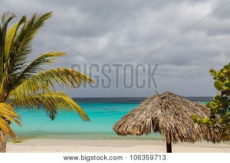 Thatched Roof And Palm On Tropical Beach