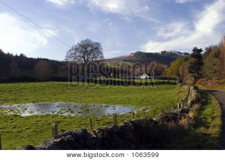 Farm Scene In The Scottish Highlands