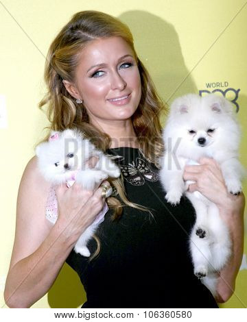 LOS ANGELES - JAN 10:  Paris Hilton, Princess Paris, Prince Hilton at the CW Network presents