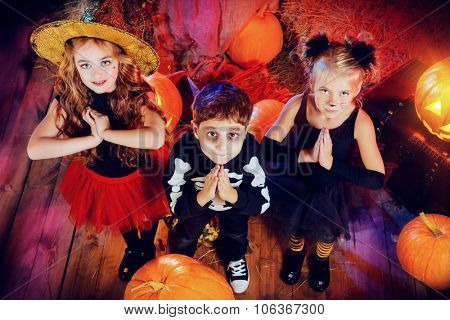 Three children dressed as a witch, a skeleton and a black cat pray in a wooden barn with pumpkins. Halloween concept.