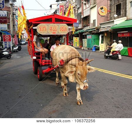 Traditional Ox Cart Transports Touirsts