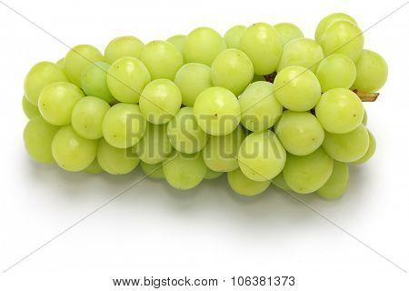 shine muscat, japanese new variety grape isolated on white background