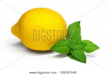Lemon And Lime Isolated With Mint On White Background