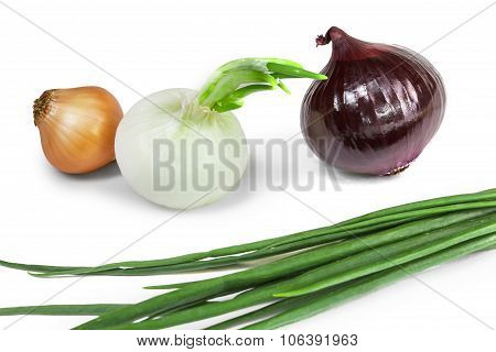 Some Onions Assorted Isolate On A White Background