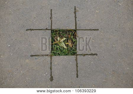 tic tac toe with nature