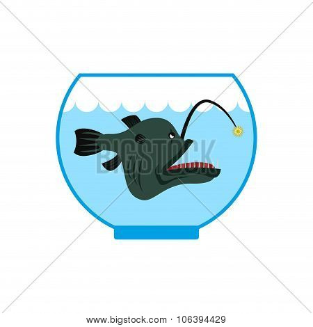 Deep Sea Fish In  Aquarium. Terrible  Anglerfish In Captivity. Predatory Water Monster As Pet.