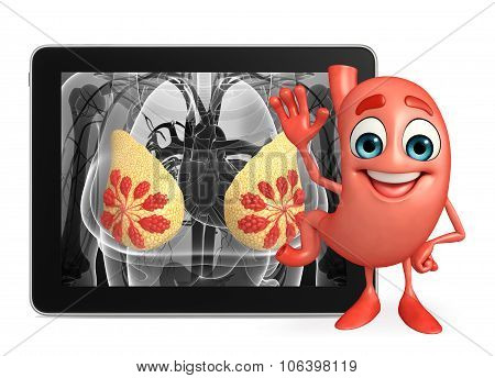 Cartoon Character Of Stomach With Breast Anatomy