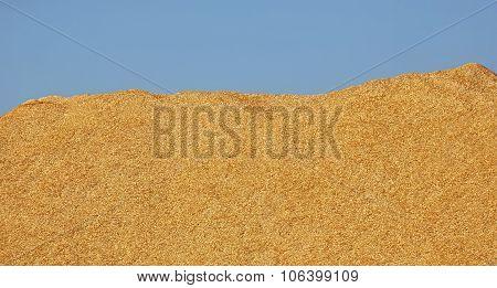 Wood Chips Pile Blue Sky