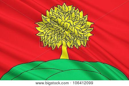 Flag Of Lipetsk Oblast, Russian Federation