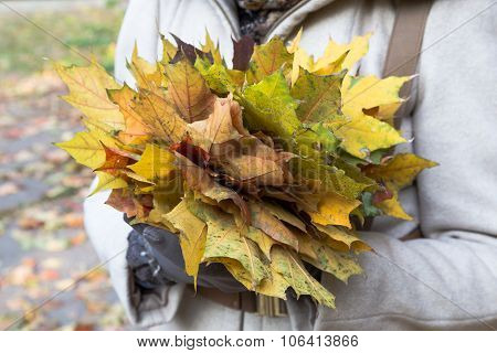 Image Of Part Girl With Bouqet Of Colorful Maple Leaves.