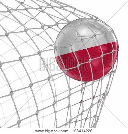 Polish soccerball in net