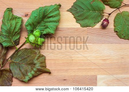 The background with leaves and nuts