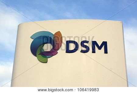 Dsm Nv  Dutch Chemical Company