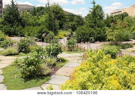 Washington Botanic Garden