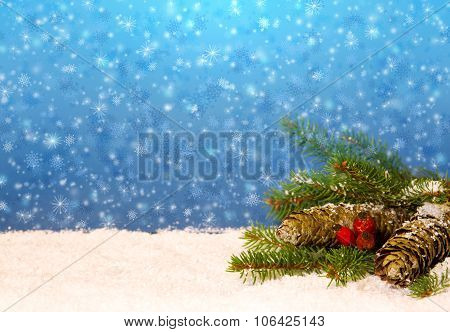 Pine cones and fir-tree branch isolated on blue.