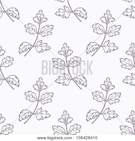 Hand drawn parsley branch outline seamless pattern