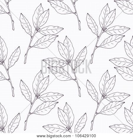 Hand drawn bay leaf and branch outline seamless pattern