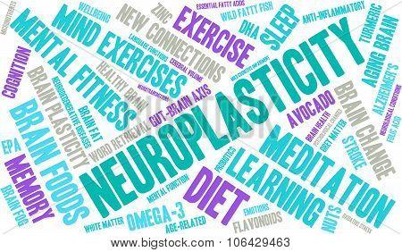 Neuroplasticity Word Cloud