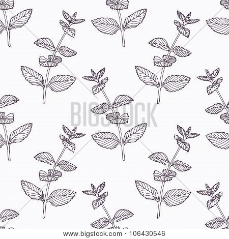 Hand drawn mint branch outline seamless pattern