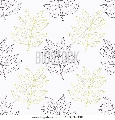 Hand drawn curry leaves and branch outline seamless pattern