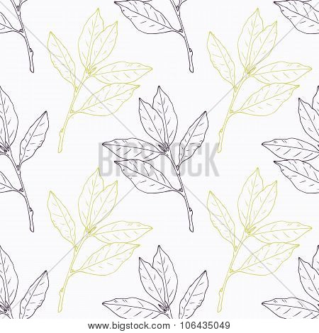 Hand drawn bay leaf and branch stylized black with green seamless pattern