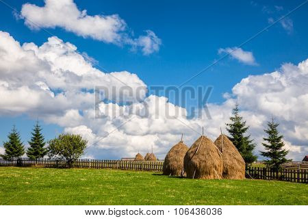 Loose stacked hay built around a central pole in Carpathian Mountains, Romania