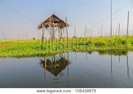 Floating eaves onInle lake