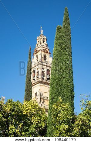Mosque-cathedral Of Cordoba In Spain