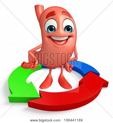 Cartoon Character Of Stomach With Circular Arrow  Diagram