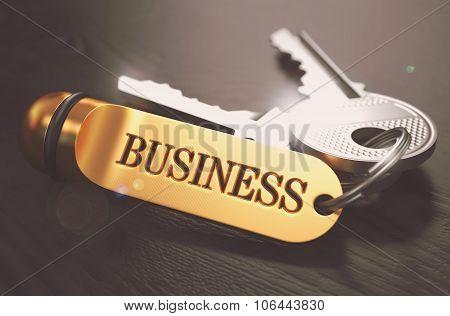 Business Concept. Keys with Golden Keyring.