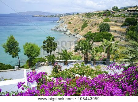 landscape of Andros island Greece