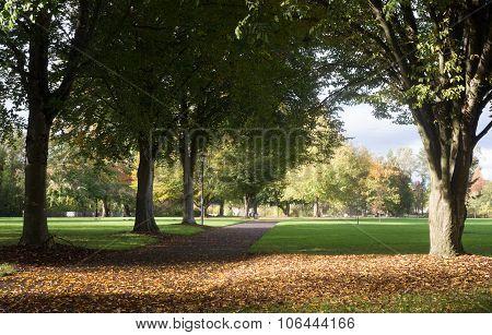Early Fall At Alton Baker Park