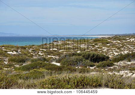 Dunes in Troia Portugal