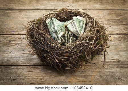 Money in the nest. Crumpled US Dollar bills in a bird nest on rustic wooden background