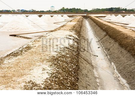 Salt Farm, Salt Pile In Thailand