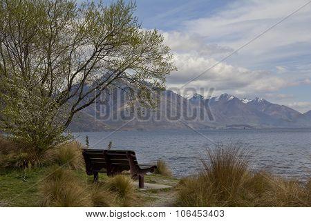 Lake Wakatipu with Park Bench