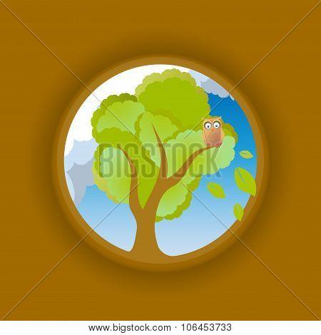 Owl on oak looking abroad