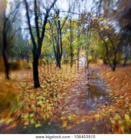 Autumn.view From The Window.selective Focus.