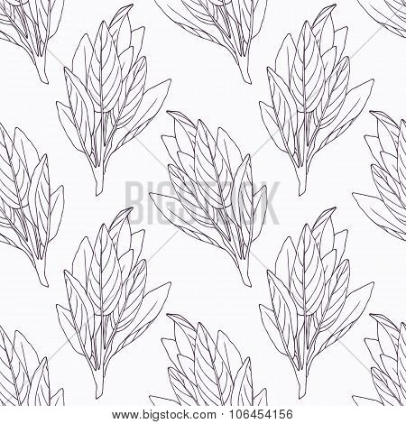 Hand drawn sage branch outline seamless pattern