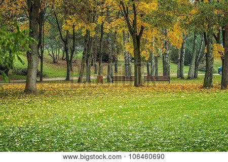 Park In Birstonas