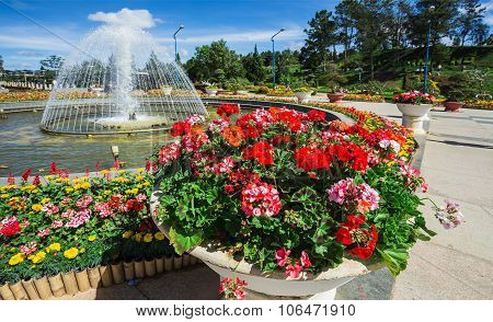 City Flower Garden In Dalat, Vietnam