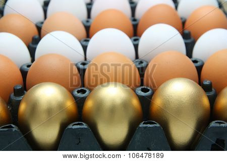 Golden Eggs, Duck Eggs And Chicken Eggs