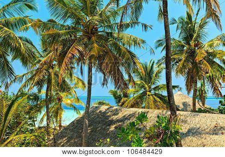 View In Trpical Hotel Ranveli, Maldives